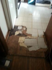 holocaust flooring